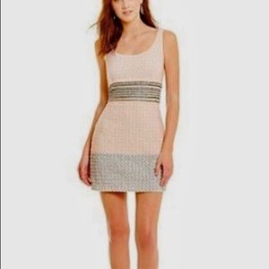 NWT Badgley Mischka Pink & Gray Sequin Dress